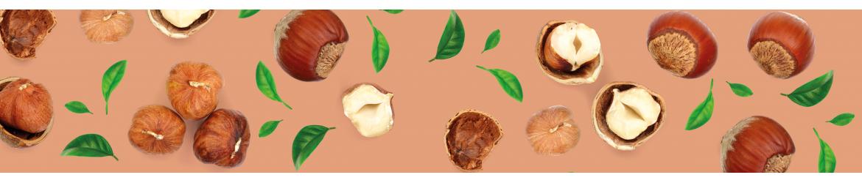Noisettes et noix de France koki